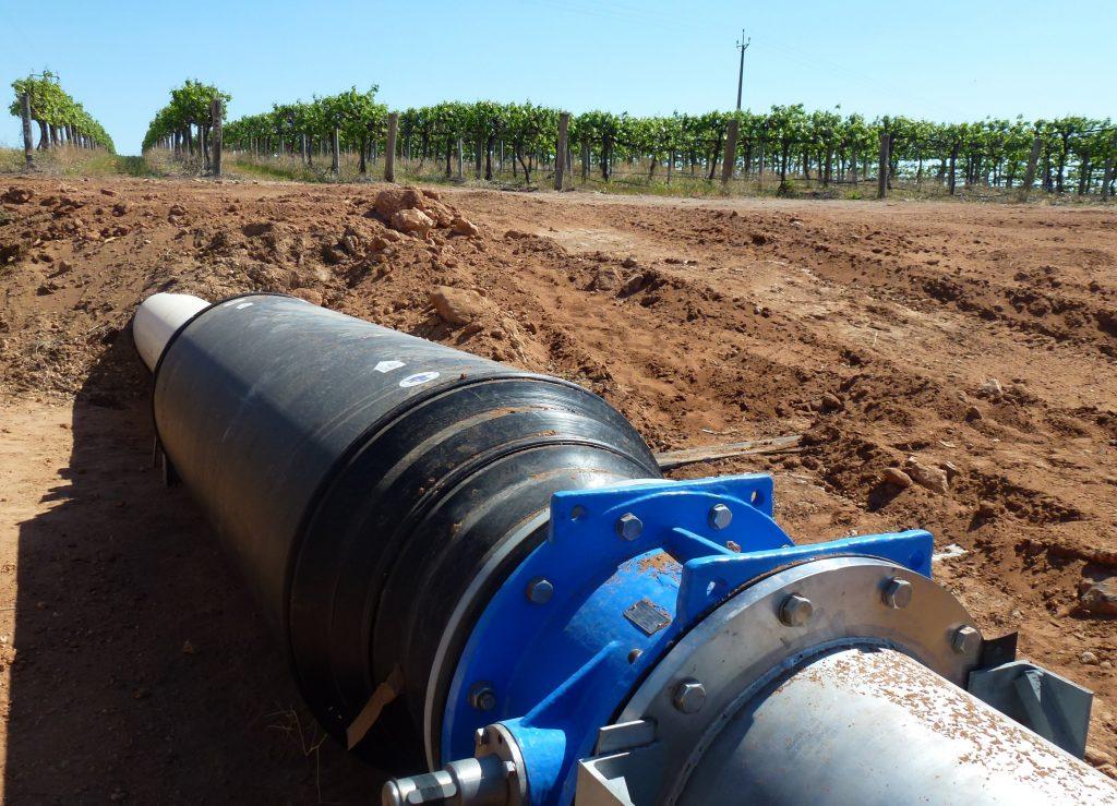 blocked irrigation systems, algae,
